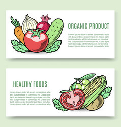 Vegetables organic food banner set veggie vector