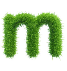 small grass letter m on white background vector image vector image