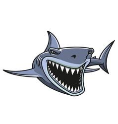 Danger shark attacks vector image vector image