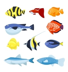 fish set Underwater and aquarium fishes vector image vector image