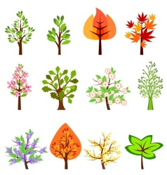 set of different beautiful trees vector image vector image