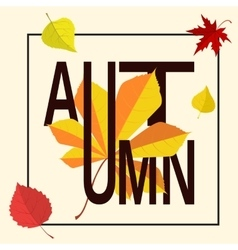 Autumn word in frame vector image