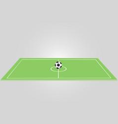ball lies on the grass a football match vector image