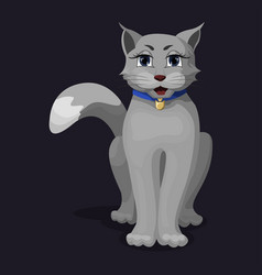 cute good gray cat with a blue collar and big eyes vector image