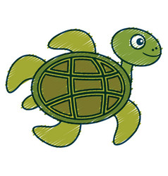 cute turtle character icon vector image