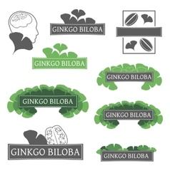 Logos ginkgo biloba vector image