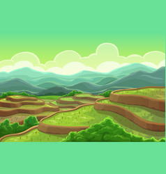 rice fields plantation mountain cascade landscape vector image