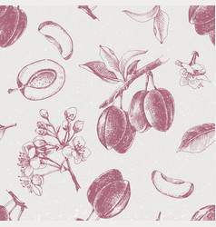 Seamless pattern with hand drawn plum flowers vector