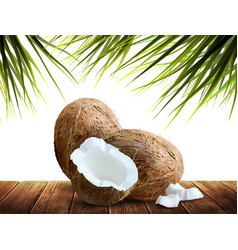 Two whole and half with pieces coconuts lie on vector