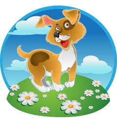 Orange fun dog on a color background vector image vector image