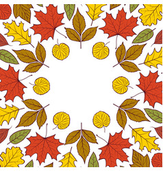pattern with autumn leaves vector image vector image