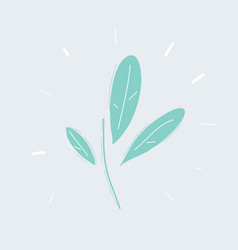 a drawing leaf isolated natural tree branch vector image