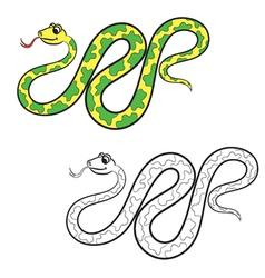 Boa coloring book vector