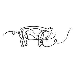 Continuous line drawing pig new year vector