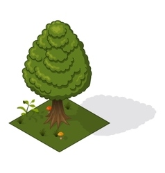 Forest tree isometric vector