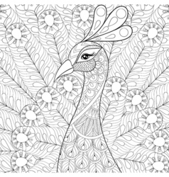 peacock with feathers in entangle style freehand vector image