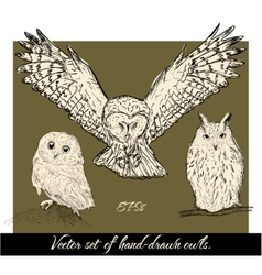 Set of isolated hand-drawn owls 1 vector