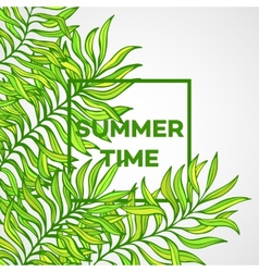 summer time tropical palm vector image