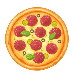 whole pizza pepperoni top view color flat vector image