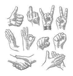 male and female hand sign fist like handshake vector image vector image