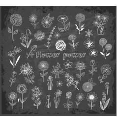 set of doodle sketch flowers on blackboard vector image
