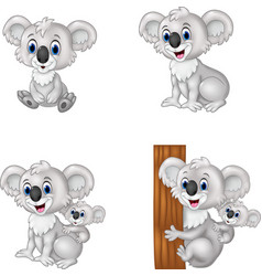 Cartoon koala collection set vector