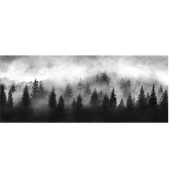 landscape with black misty forest trees and cloudy vector image