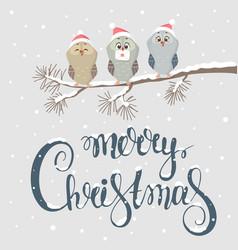 owl christmas vector image