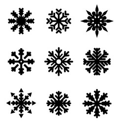 set of winter christmas snowflakes vector image