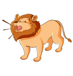 Wild lion on white background vector