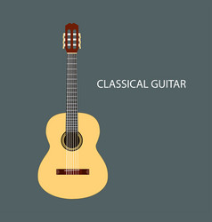 classical guitar isolated vector image