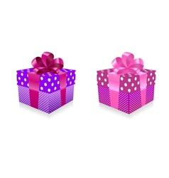 Gift box vector image