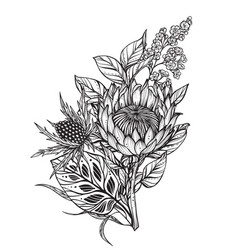 Beautiful composition black and white vector