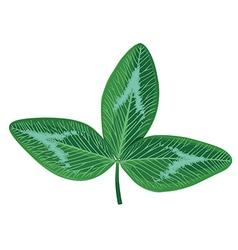 Clover leaf vector