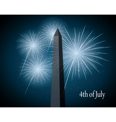 Displays fireworks vector
