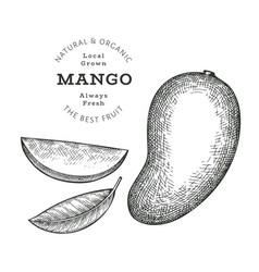 Hand drawn sketch style mango organic fresh food vector