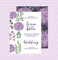 hydrangea flowers decoration floral wedding card vector image
