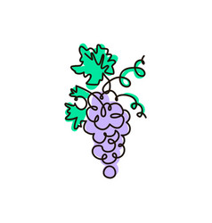 line icon grape one line colored drawing vector image