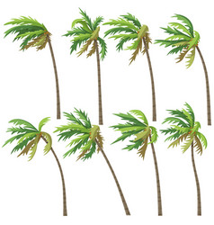 tropical palm trees on wind storm vector image