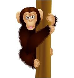Funny chimpanzee cartoon vector image