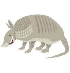 Armadillo animal cartoon vector
