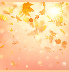 autumn composition with maple leaves eps 10 vector image