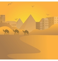 Camel caravan travel in desert with pyramids of vector