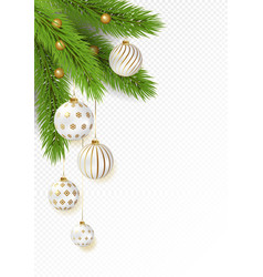 christmas tree branches with hanging gold vector image