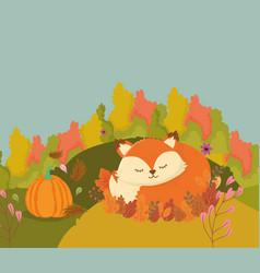 Cute fox sleeping in leaves hello autumn vector