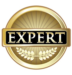 Expert Gold Label vector image