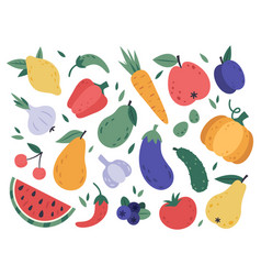 hand draw fruits and vegetables doodle organic vector image