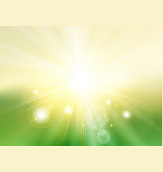 sky with sunlight rays twilight blurred green vector image