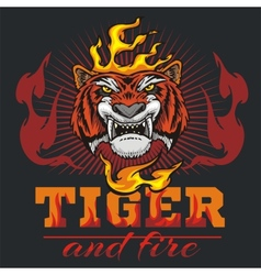 Tiger head hand and fire vector image