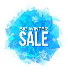 Big Winter Sale sign on blue ice and snowflakes vector image